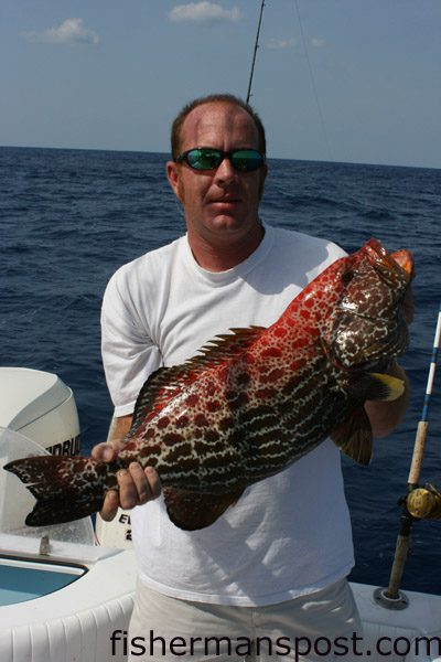 Randy Edwards, of Wilmington, NC, with a fireback grouper caught on a dead cigar minnow while fishing with Capt. Rick Croson, of Living Waters Guide Service, 50 miles out of Masonboro Inlet in 20 fathoms of water.