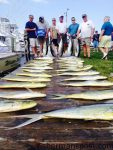 """Gary Gilbert and friends from Durham, NC, with a big haul of gaffer dolphin, seven yellowfin tuna, and a white marlin release flag, results of a mid-May trip offshore of Oregon Inlet with Capt. Dave Peck on the """"Skiligal"""" out of Oregon Inlet Fishing Center."""