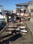 """Bucky Zentner and friends with cobia to 78 lbs. they hooked while sight-casting to fish off Hatteras Inlet with Capt. Jeremy Hicks on the """"Capt. Snag"""" out of Oden's Dock."""