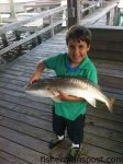 C.J. Branco (age 8), of Wilmington, with a red drum that struck a live pinfish while he was fishing from an ICW dock.